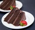 Chocolate Layer Cake - slice Royalty Free Stock Photo