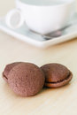 Chocolate marron cookies Royalty Free Stock Photo