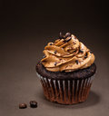Chocolate mocha cupcake a cup cake with icing and sprinkles Stock Images