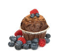 Chocolate muffin with berries on a white background Royalty Free Stock Photo