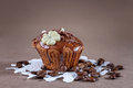 Chocolate muffin with and coffee beans Royalty Free Stock Photography