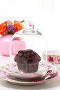 Chocolate muffin cupcake under glass cover Royalty Free Stock Photo