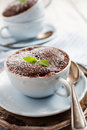 Chocolate mug cake Royalty Free Stock Photo