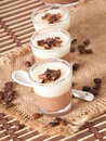 Chocolate Panna Cotta Royalty Free Stock Image