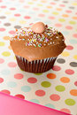 Chocolate polka dot cupcake Stock Image