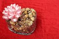 Chocolate popcorn for Valentine day Stock Image
