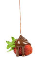 Chocolate is poured on strawberries isolated strawberry in a white background Stock Image