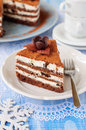 Chocolate quark and prune layer cake a piece of copy space for your text Royalty Free Stock Photo