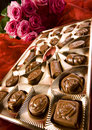 Chocolate & Roses Royalty Free Stock Image