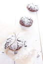 Chocolate snow cap cookies for christmas tasty Stock Photos