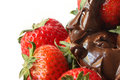 Chocolate Strawberries Royalty Free Stock Image