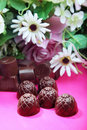 Chocolate sweets and flowers Stock Photography