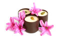Chocolate sweets with pink flowers of hyacinth on a white background Royalty Free Stock Photos
