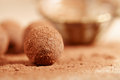 Chocolate truffles cocoa powder dusted and sieve Stock Photos