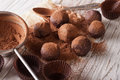 Chocolate truffles sprinkled with cocoa powder close-up. horizon Royalty Free Stock Photo