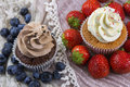 Chocolate and vanilla cupcakes with blueberries and strawberries Royalty Free Stock Photo