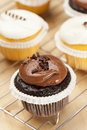 Chocolate and Vanilla Frosted Cupcake Royalty Free Stock Photos
