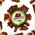 Chocolate vector label Royalty Free Stock Photo