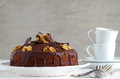 Chocolate walnut cake with chocolate glazing a home made Stock Photography