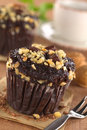 Chocolate-Walnut Muffins Royalty Free Stock Photography