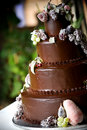 Chocolate wedding cake Royalty Free Stock Photos