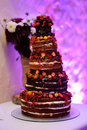 Chocolate wedding cake decorated with fruits Royalty Free Stock Photo