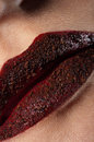 Chocolate woman lips, macro shot Stock Images