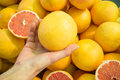 Choosing citrics female hand grapefruit on a street market stall Royalty Free Stock Photography