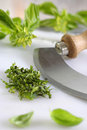 Chopped basil and chopper Royalty Free Stock Image