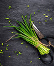Chopping a bunch of fresh chives Royalty Free Stock Photo
