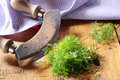 Chopping fresh dill with a curved rocker knife for use as an aromatic flavouring and seasoning in salads and cooking Royalty Free Stock Photos
