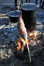 Chops, bake fish on an open fire Royalty Free Stock Photo