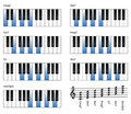 Chords Royalty Free Stock Photo