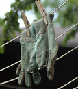 Chore gloves hanging on clothes line gardening or a in summer to dry Royalty Free Stock Photos
