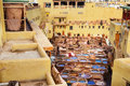 Chouwara traditional tannery in Fez, Morocco Royalty Free Stock Photo