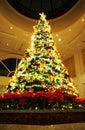 Chrismas tree Royalty Free Stock Photo