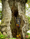Christ inside the tree in mountain italian village a small statue of crucified was placed for devotion in hollow trunk of an old Stock Images