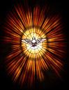 Christian dove religious holy spirit symbol Stock Image
