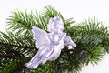 Christmas angel. Royalty Free Stock Photos