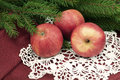 Christmas apples three delicious red and fir on white napkin retro style Stock Images