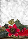 Christmas background decoration with red flower and leaves over grey bokeh Stock Images