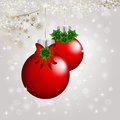Christmas background elegant with snowflakes red glass ball and place for text Stock Photography