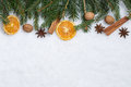 Christmas background with fir branches, orange fruits and snow
