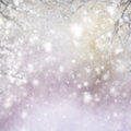 Christmas background with fir tree and gleaming Royalty Free Stock Photo