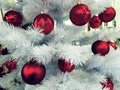 Christmas background with white christmas tree and red balls. Branches of fir and decorations