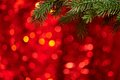 Christmas background xmas tree on bllurred red Royalty Free Stock Images