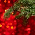 Christmas background xmas tree on bllurred red Stock Photo