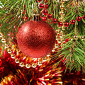 Christmas ball on a Christmas tree Royalty Free Stock Photos