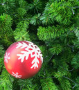Christmas ball decorations hanging on tree Stock Images