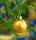 Christmas ball on fir-tree branch Stock Photos